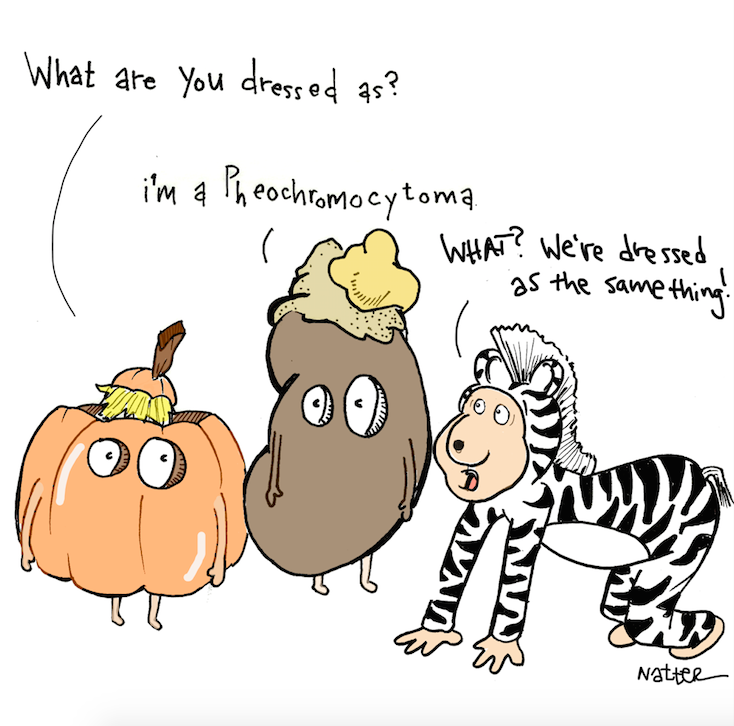 halloweenzebra